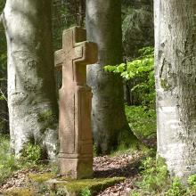 Buchenkreuz