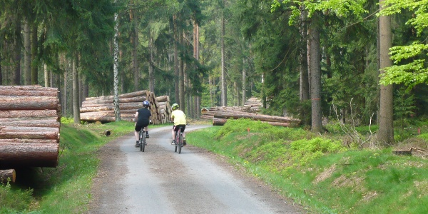 Auf Fahrradtour mit der Weißeritztalbahn - durch die Dippoldiswalder Heide