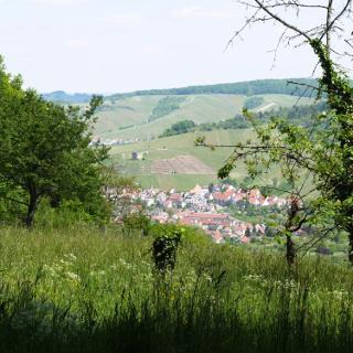 Blick auf Stetten mit Y-Burg