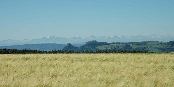 Hegauberge mit Alpenpanorama