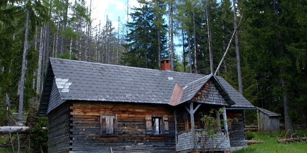 Weingartl Alm 1154 m