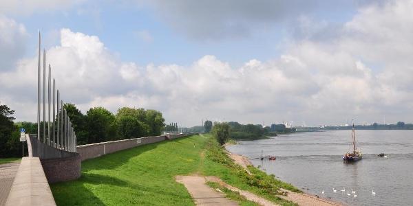 Deich Monheim am Rhein