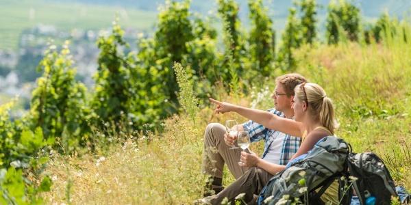 Moselsteig - Wein und Wandern