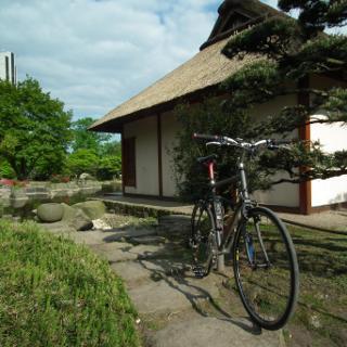 Planten un Blomen: Japanischer Garten