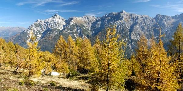 Herbst im Pinnistal