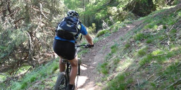 Schmaler Trail bei der Abfahrt.