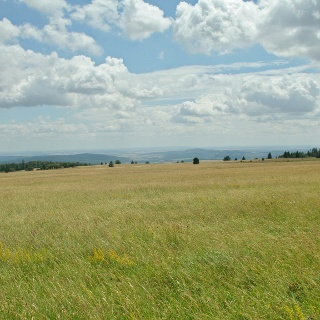 Am Aussichtspunkt Heimatblick bietet sich uns eine atemberaubende Fernsicht in die südliche Rhön.