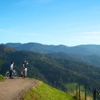 Blick über den Schwarzwald vom Panoramaradweg