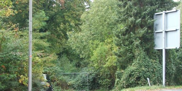 Gelände Alte Burg