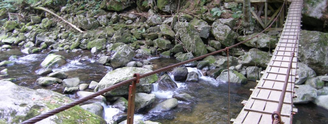 Kleine Mutprobe - das Queren des Bachs über die schmale Hängebrücke fordert Nerven.