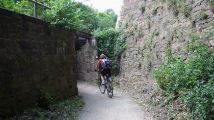 Fahrradfahrer auf dem Mulderadweg