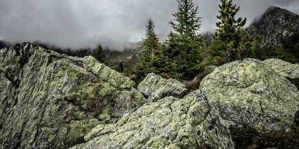 Blick von der Salzkofelhütte Richtung Salzkofel.
