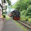 Ein Zug der Harzer Schmalspurbahnen im Bahnhof Netzkater.