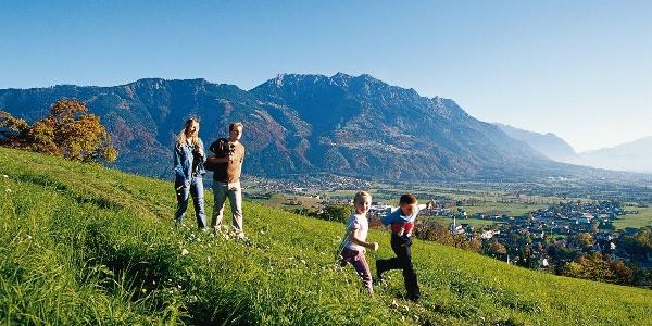 Alpenpanorama am Eschnerberg