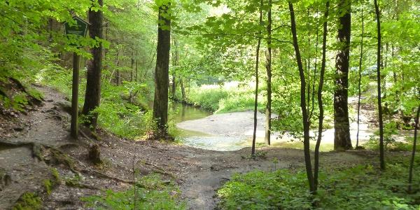 Der Blick auf die Kirnitzsch begleitet die Wanderung auf dem Flößersteig