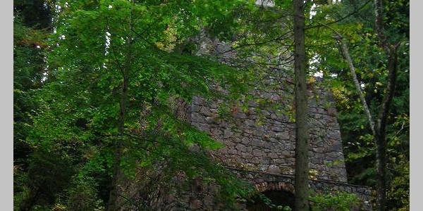 Zementofen im Wald