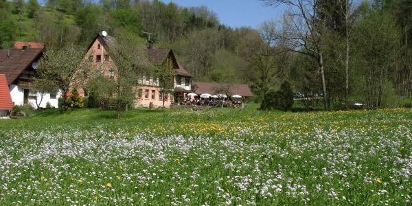 Die Hertensteiner Mühle im stillen Rötelbachtal