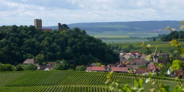 Bilck auf die Burg Neippberg