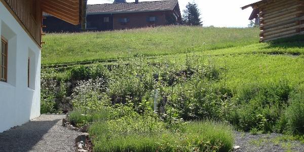 Kräutergarten an der Gästeinformation Ofterschwang
