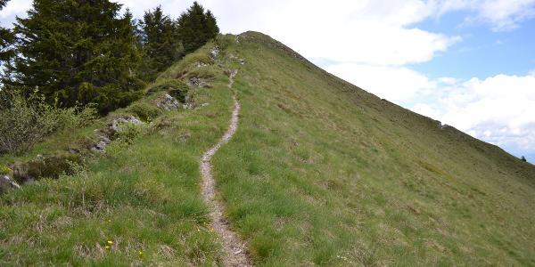 Weg auf dem Grat mit Laufgraben daneben