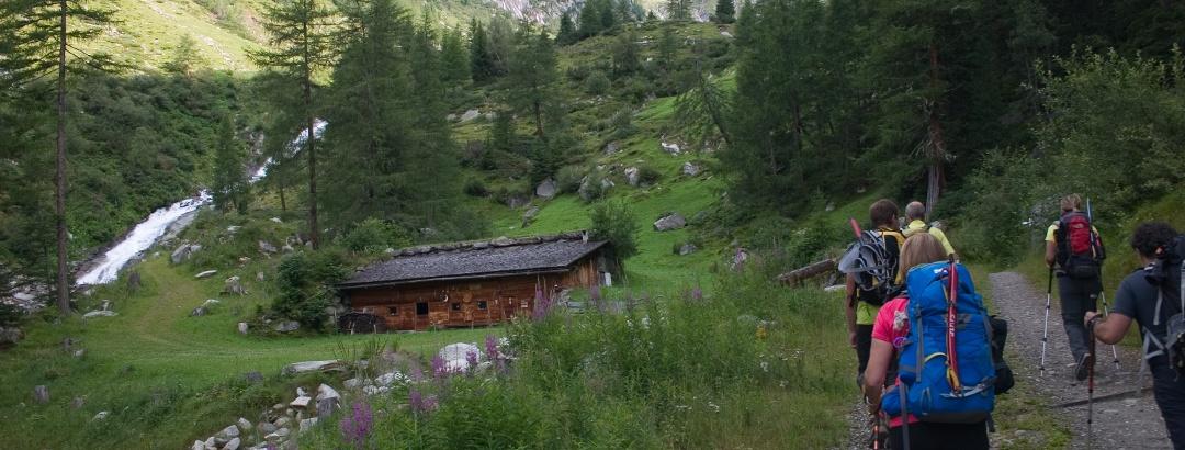 Auf bequemer Forststrasse durch das Rotbachtal , vorbei an Almen und Hütten.
