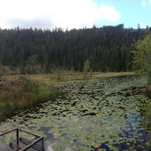 Hutzenbacher See