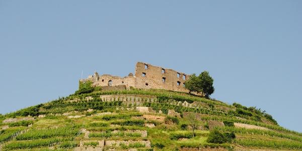 Staufener Burg