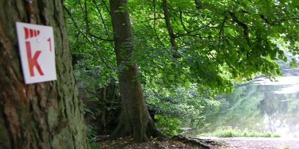Klima ElebensWert am Donoper Teich