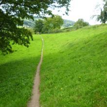 Trail kurz vor Munster