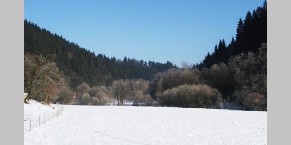 Ein Blick ins Teinach-Tal.
