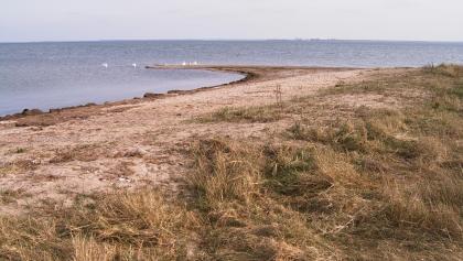 Durch küstenparallele Strömungen bilden sich an Küstenvorsprüngen so genannte Sandhaken.