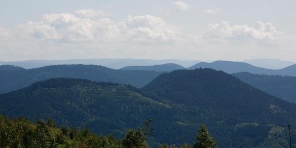 Schwarzwald-Aussicht