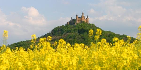 Wanderung Rund Um Die Burg In Bisingen Wanderung Outdooractive Com