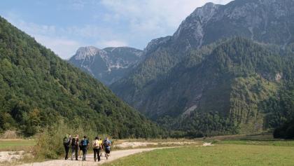 Dem Forstweg entlang in die Hopfing, rechts davon Gelände des Truppenübungsplatzes