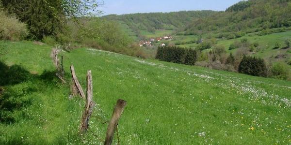 Schöner Wiesenpfad mit Blick nach Eberbach.