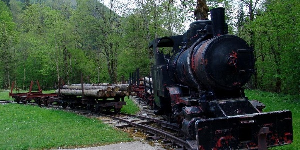 Bahngarnitur der alten Waldbahn