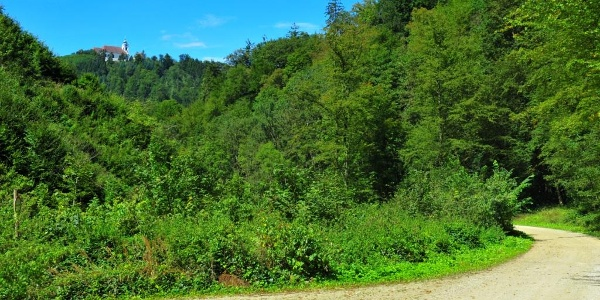 Dating aus dunkelsteinerwald - Horn reiche frau sucht mann