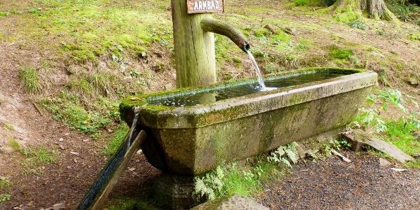 Armbad-Brunnen