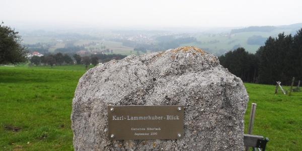Karl-Lammerhuber-Blick
