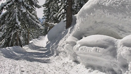 Rodel in sonniger Winterlandschaft