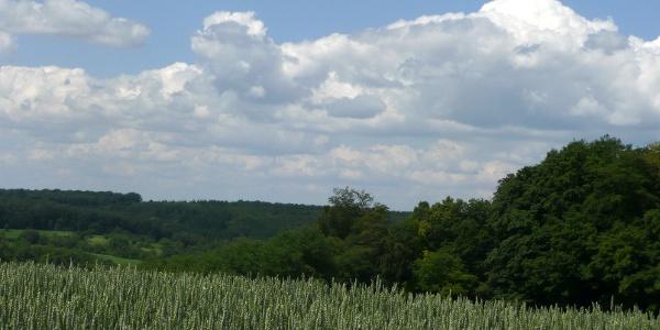 Genussvolle Landschaften