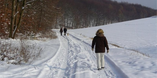 Despental bei Borchen (Winterbild)