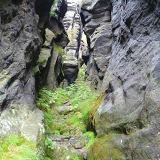 Felsenwelt im Elbsandsteingebirge