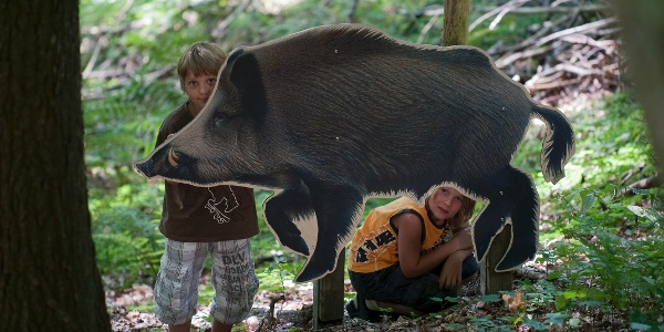 Kinder entdecken den Walderlebnispfad Bad Fredeburg