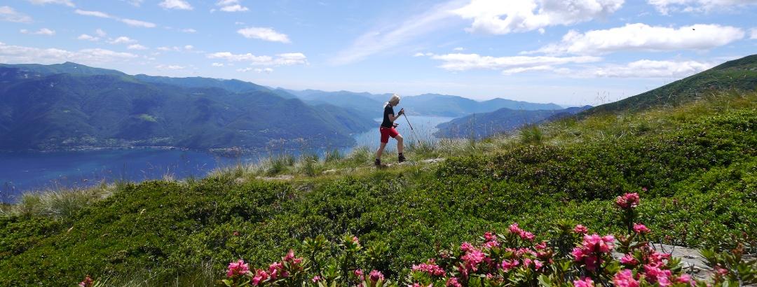 Lago Maggiore Karte Mit Orten.Wanderwege Am Lago Maggiore Die 10 Schönsten Touren Der Region