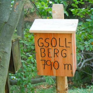 Gsolberg-Gipfel 790m
