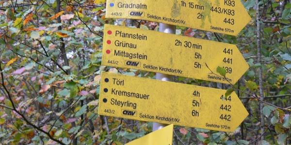 Wir folgen dem Weg Nr. 441 auf den Pfannstein