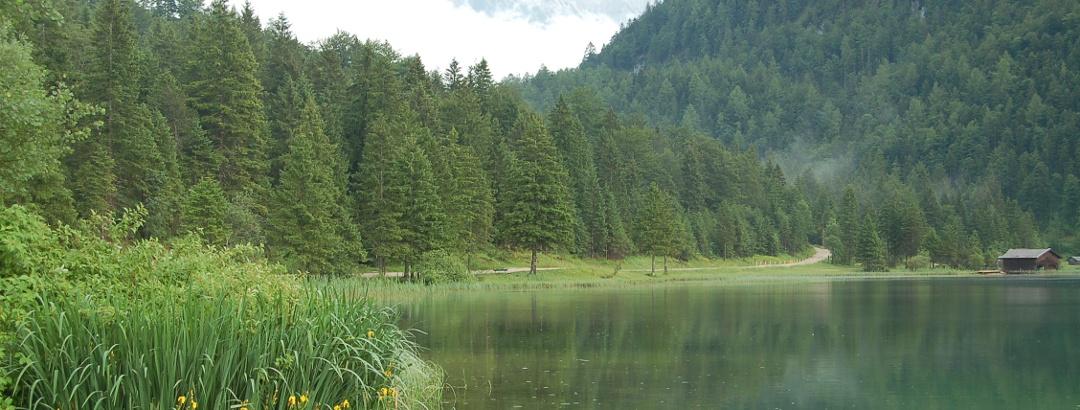 Der Ferchensee