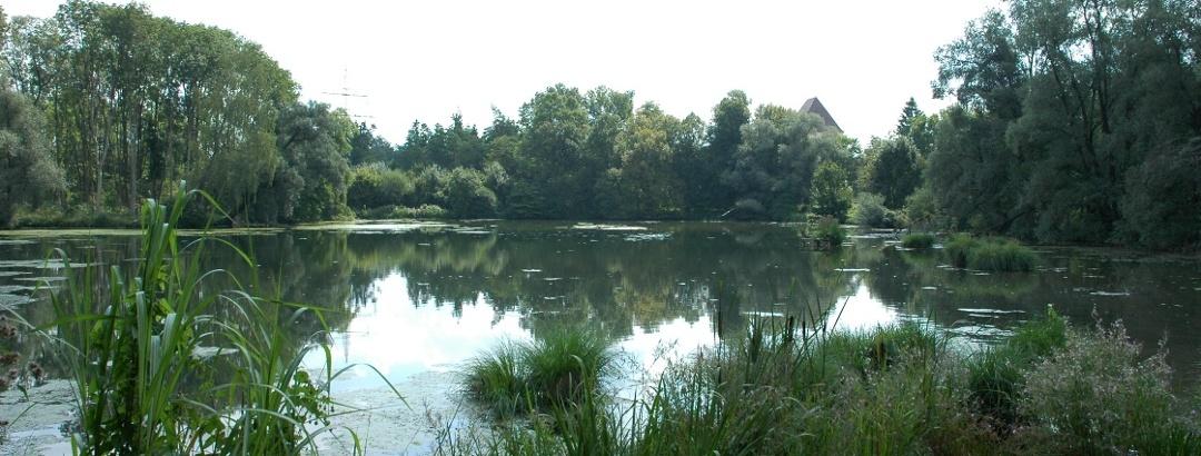 Zur Würmmühle in Dachau, die auf Anfrage besichtigt werden kann, gehört ein idyllischer Teich.