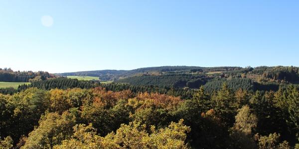 Ausblick an der Königsfeldschleife